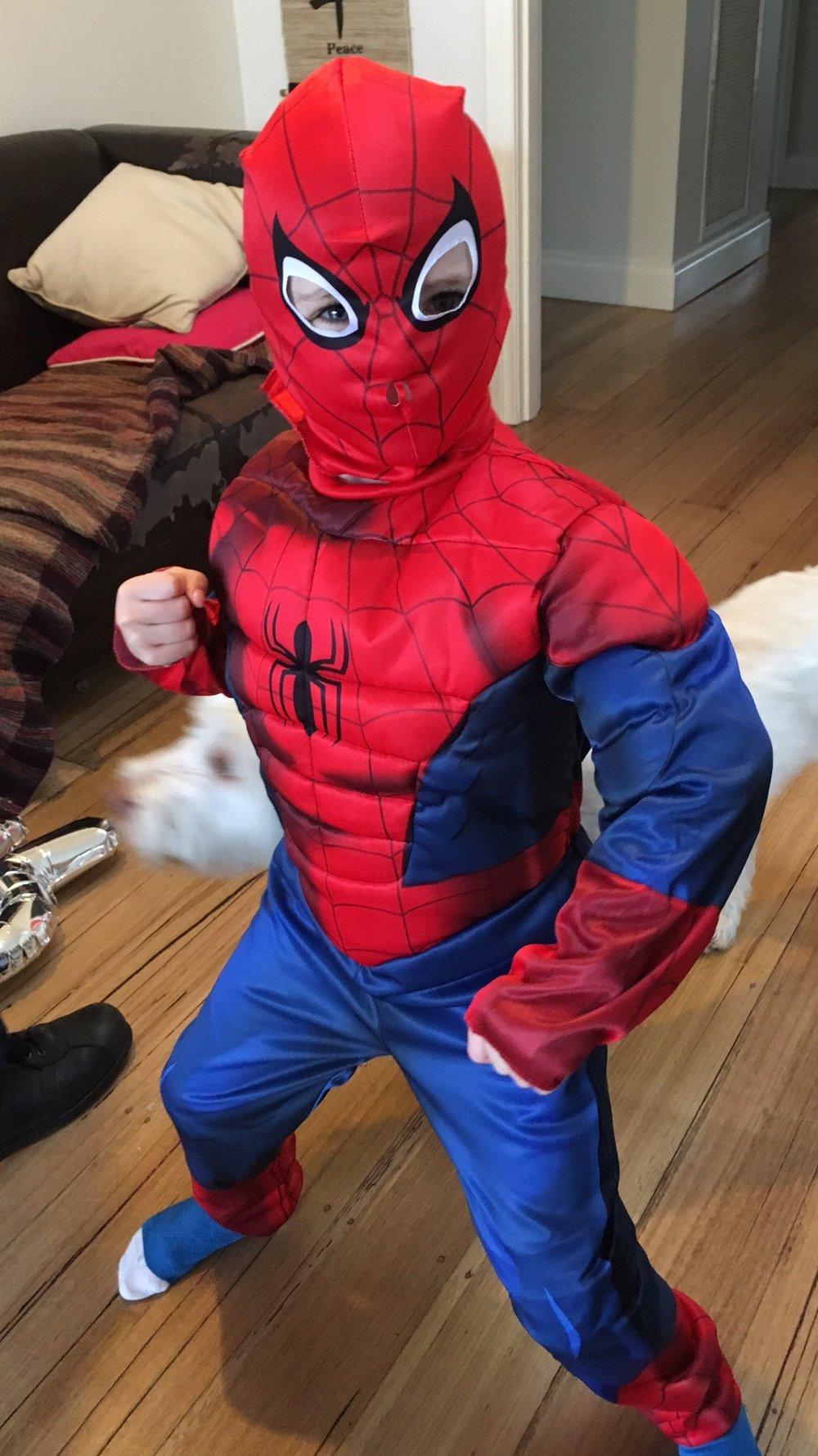 Belle spiderman.JPG
