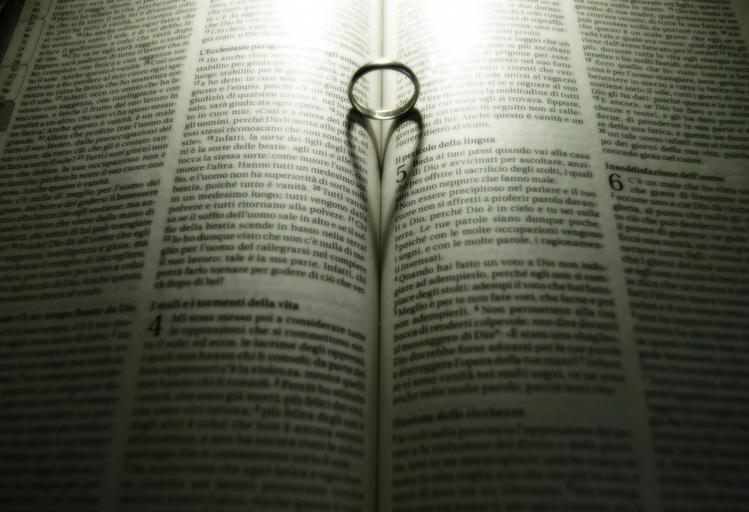 What do you see - How we read scripture…