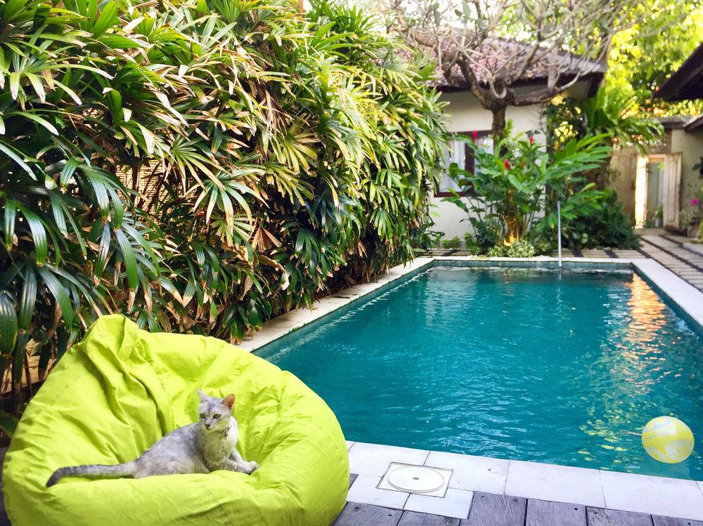 Kembali Lagi Guesthouse-012-fixed.jpg