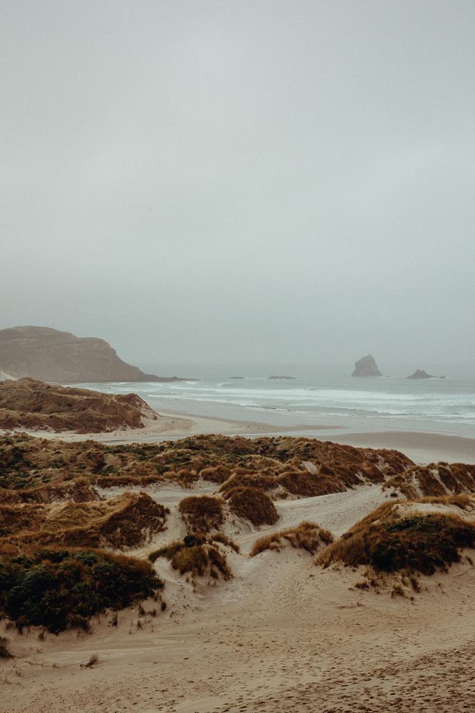 Acorn Photography - Avoca - Sandfly Bay - Dunedin - Campaign Shoot-40.jpg