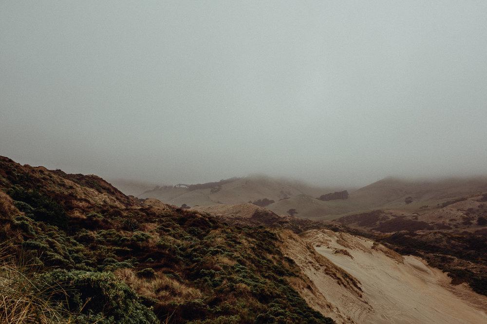 Acorn Photography - Avoca - Sandfly Bay - Dunedin - Campaign Shoot-41.jpg
