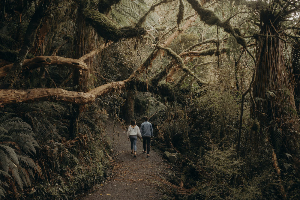 M & A - Catlins, New Zealand-99.jpg