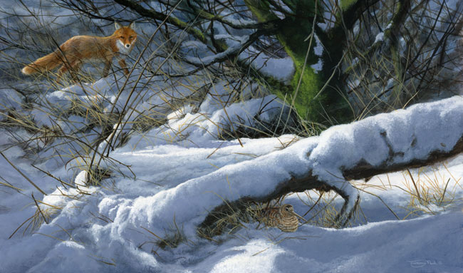 Winter-hiding-place---woodcock-and-fox - Jeremy Paul.jpg