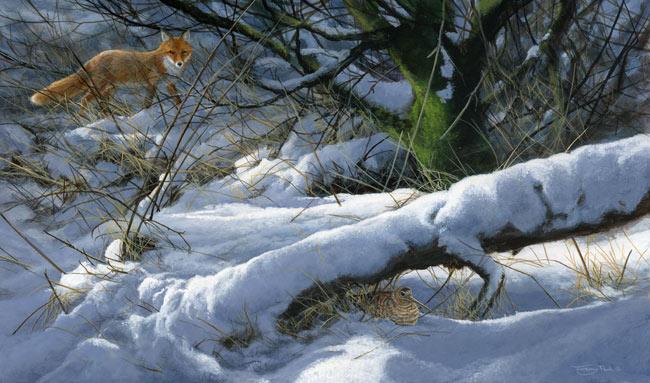 Winter-hiding-place---woodcock-and-fox - Jeremy Paul.jpg