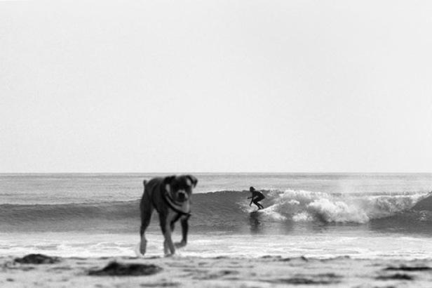 kyle_and_dog_2013_16x2401.jpg