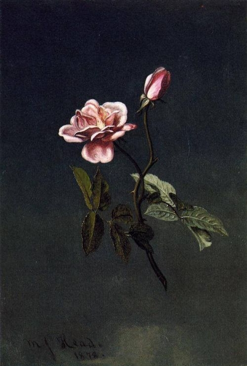 Martin Johnson Heade, 1878.