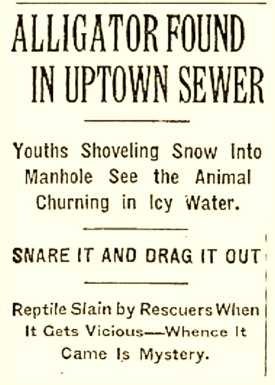 A headline from the February 10, 1935, issue of The New York Times.