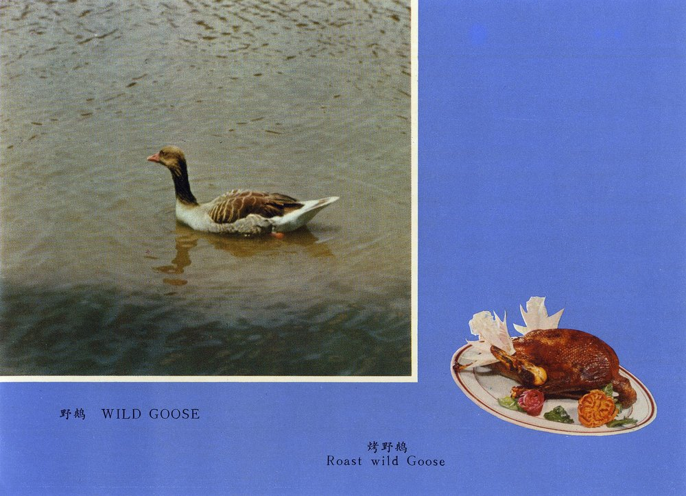 Wild goose. Frozen game , loose set of cards in envelope, 1980s. Courtesy of The Archive of Modern Conflict