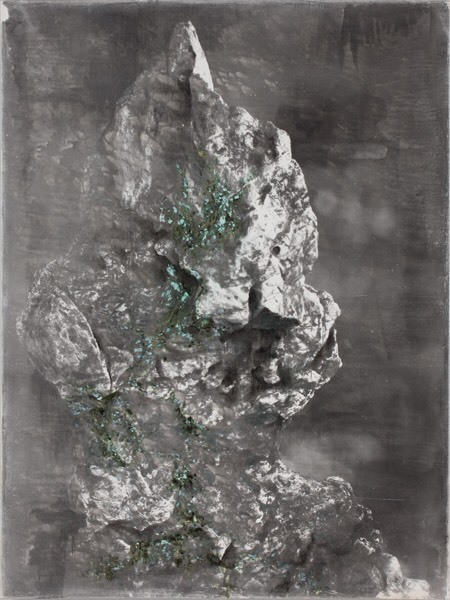 Shao Wenhuan,  Green Bloom of Decay No.24 , 2013