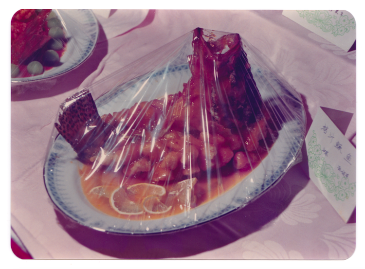 Fish gasping for air , photographie en couleur, années 1990. Autorisation: The Archive of Modern Conflict