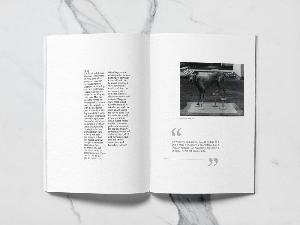 sarah ashlyn graphic design magazing brochure layout designer