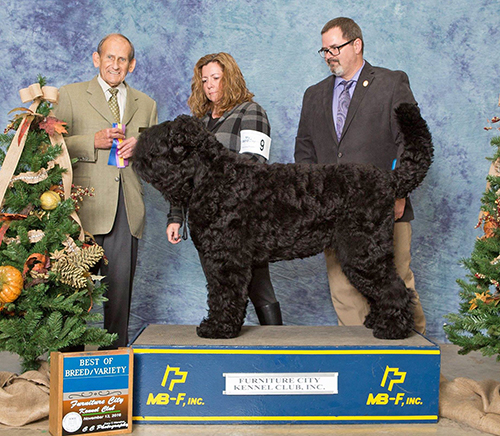 Oli Takes Best of Breed, with DeAnne and Richard