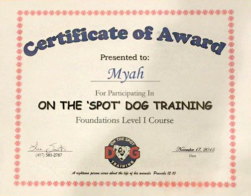 First Obedience certificate for Baby Myah (Guardian Bears Back In the Highlife)