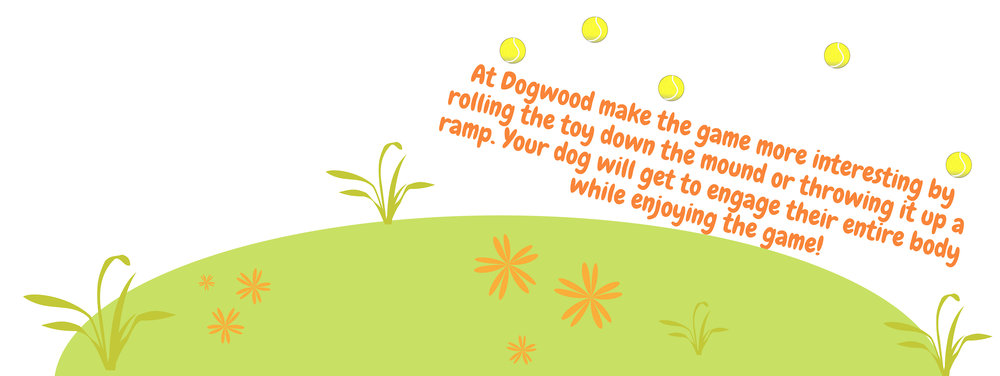 mound dogwood adventure play