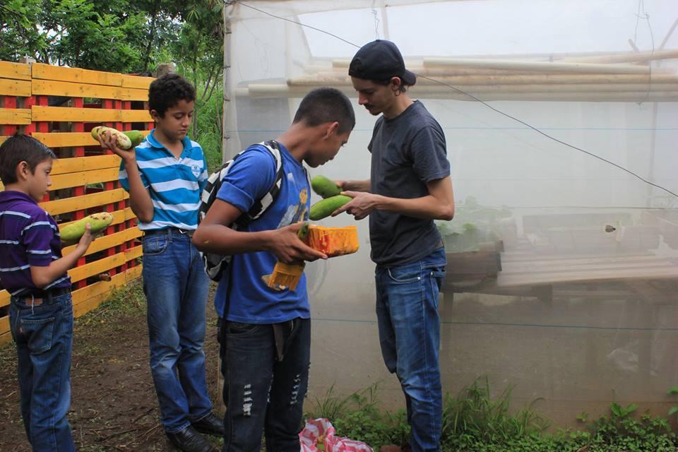 group of boys harvest.jpg