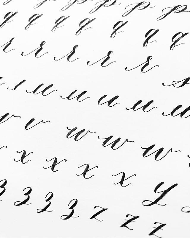 Alphabet drills ✨