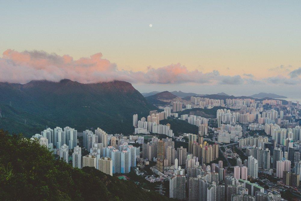Rio med skov.jpg