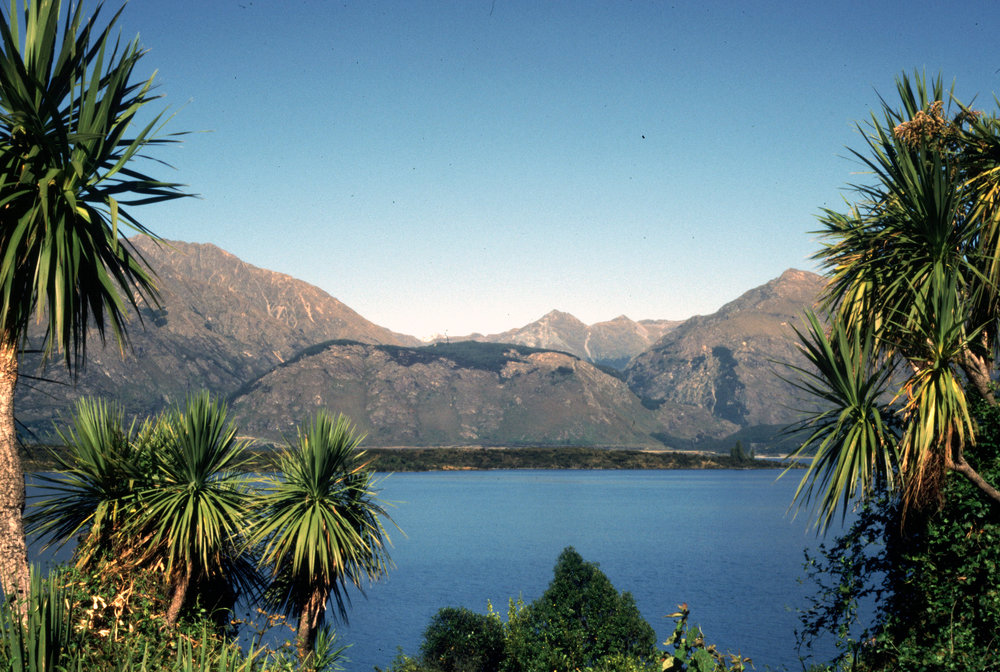 Lake Wakatipu near Glenorchy, South Island.