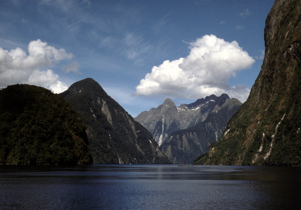 Doubtful Sound,South Island.
