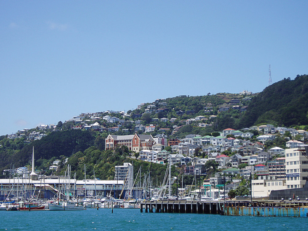 Wellington Harbour.