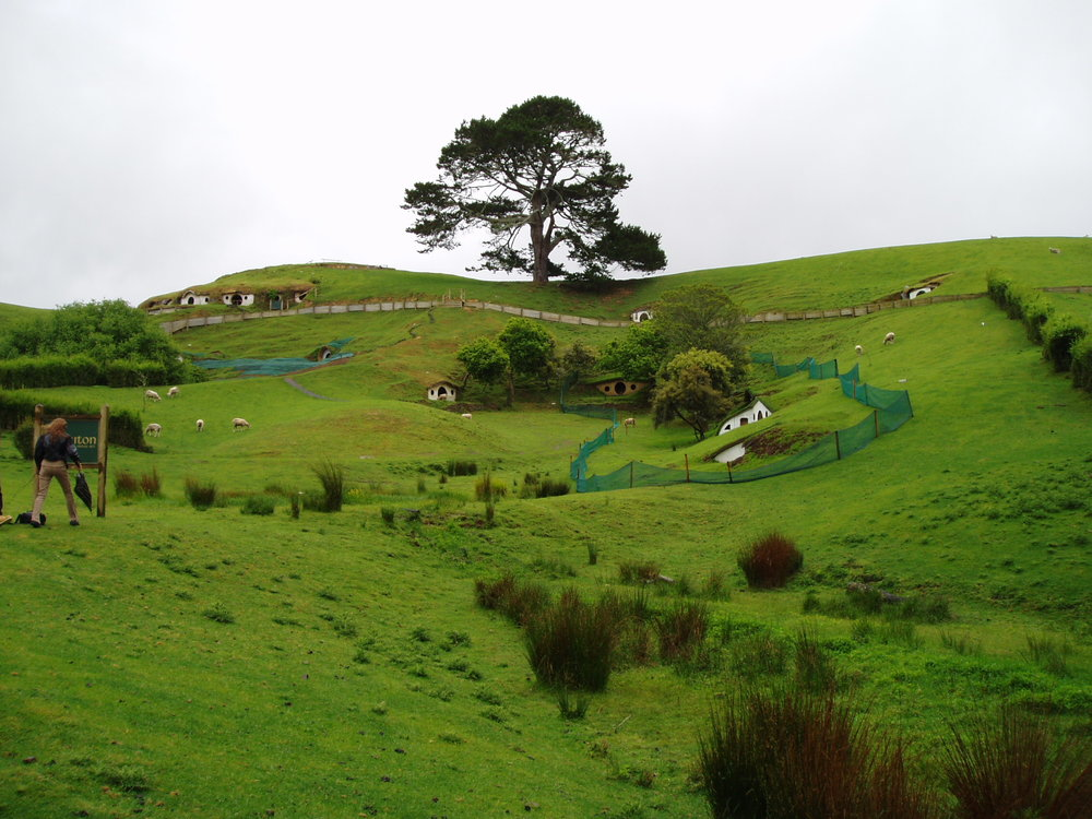 Only half the hobbit holes remained in 2003
