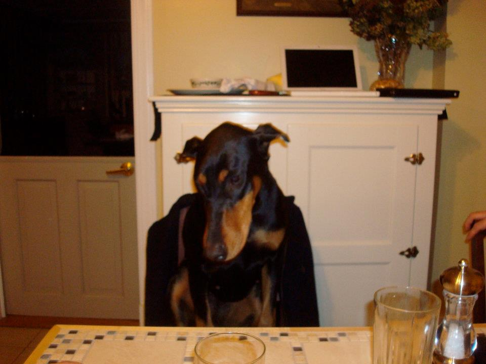 Scarlett at table.jpg