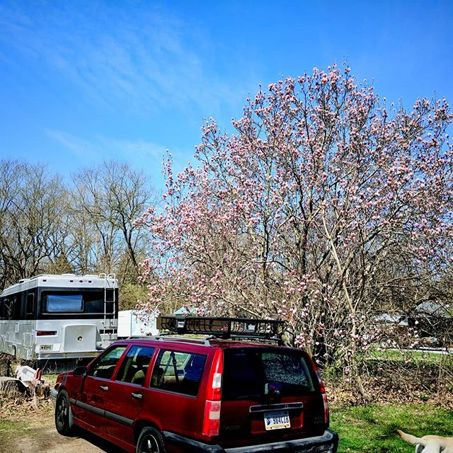 That tree and that sky, everything is coming to life again! . . . #springtime #springisintheair #spring #springisspringing #RockyRipple #Indiana #nomad #RVing #RVDreams #RVlife #RVLiving #outdoorlife #homeonwheels #homeiswhereyouparkit #houseonwheels #tinyhouse #tinyhome #SilverMachine #TheSilverMachine #volvo #volvoforlife #ovlov