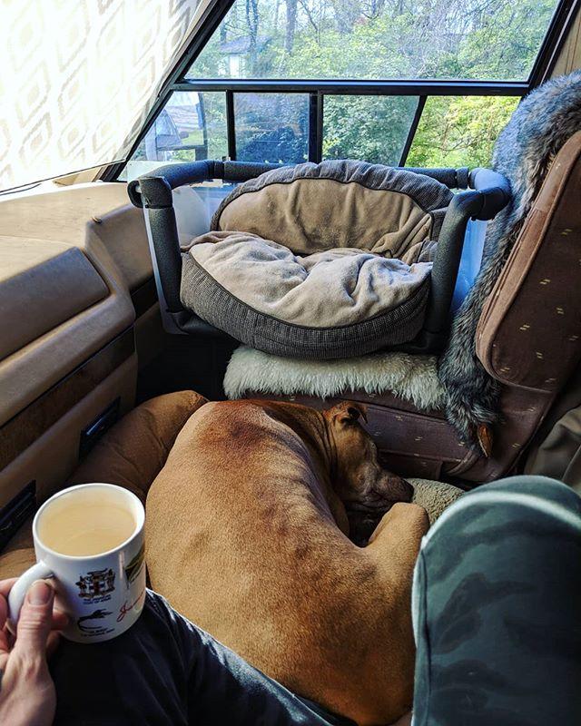 Coffee, cuddles, meditation and sunshine. Life. . . . #MagnusThePitbull #MagnusTheAmstaff #staffylove #pittylove #pitbullrescue #dontbullymybreed #bslsucks #coffee #morning #morningroutine #meditation #zen #RVDreams #RVLife #RVLiving #fulltimerv #fulltimer