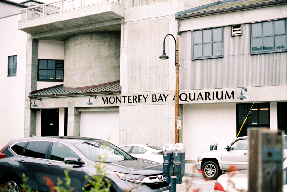 170710_MontereyTrip_MTalaveraPhoto_Film_Blog-11.jpg