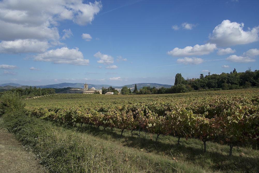 Rioja-web-1.jpg