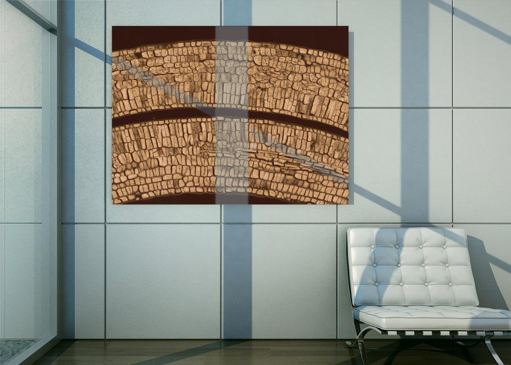Mockup-Brick-Wall-50w40h.jpg