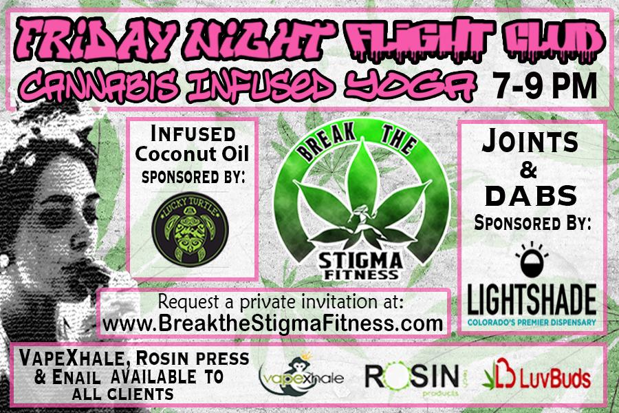 FridayNightFlightLightshadeLuckyjpg.jpg