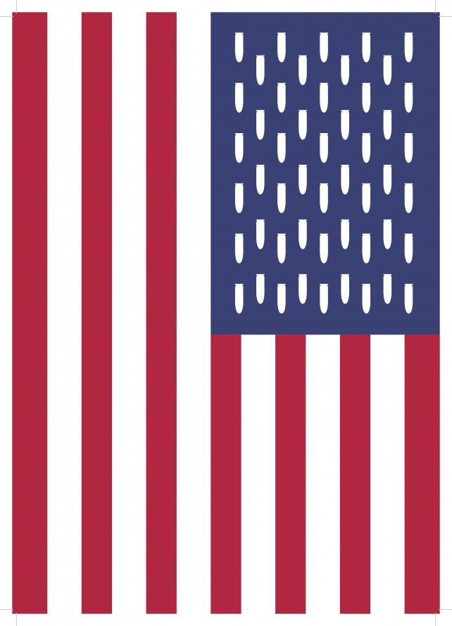 USFlag_KindaSavarino_20180315.jpg