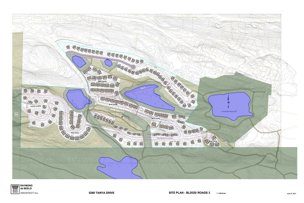 Subdivision concept plan  as submitted by the Developer to the City of Nanaimo   (click on image enlarge)