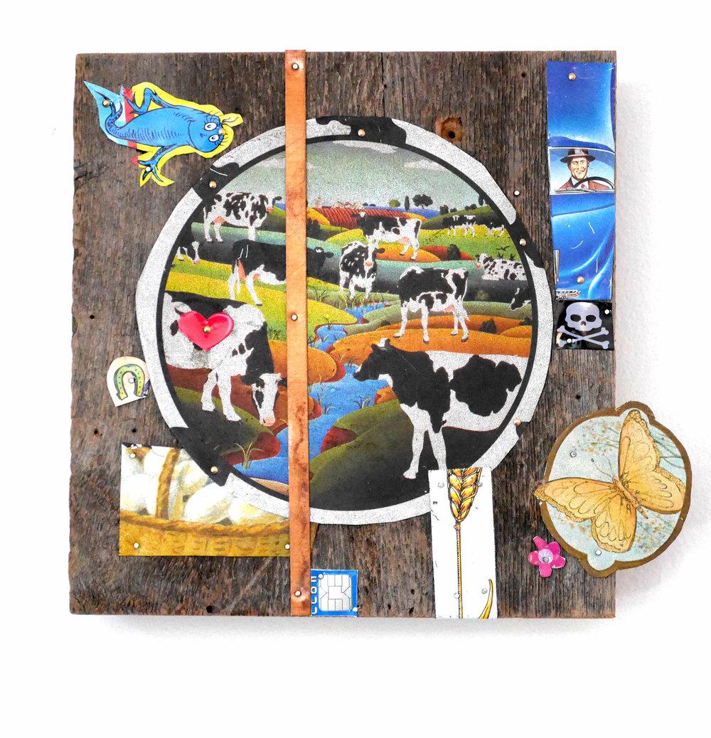 cows-2500px.jpg