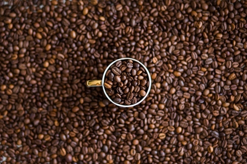 coffee beans and centered cup.jpg