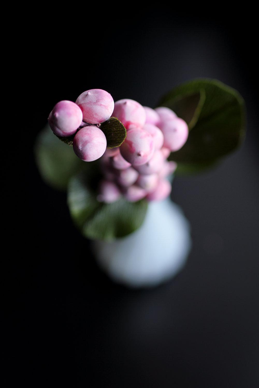 pinkberries-1.jpg