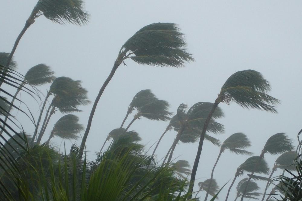 Cyclone -