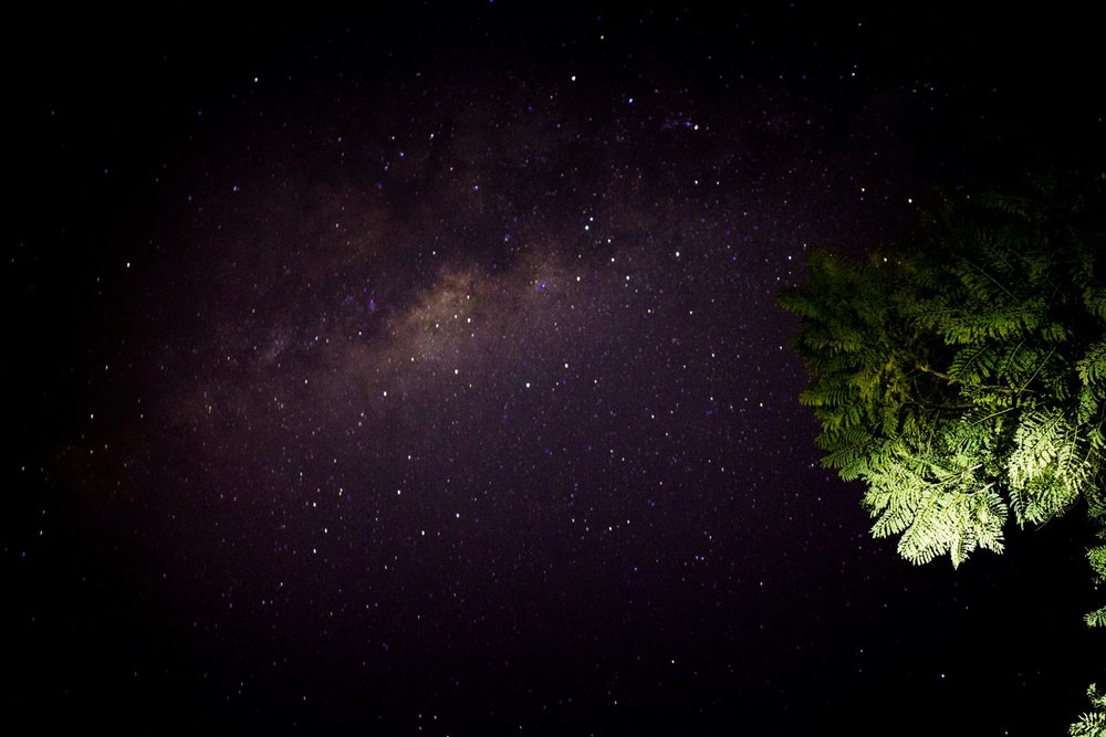 My first ever attempt at astrophotography in my back yard, one click and I was hooked.