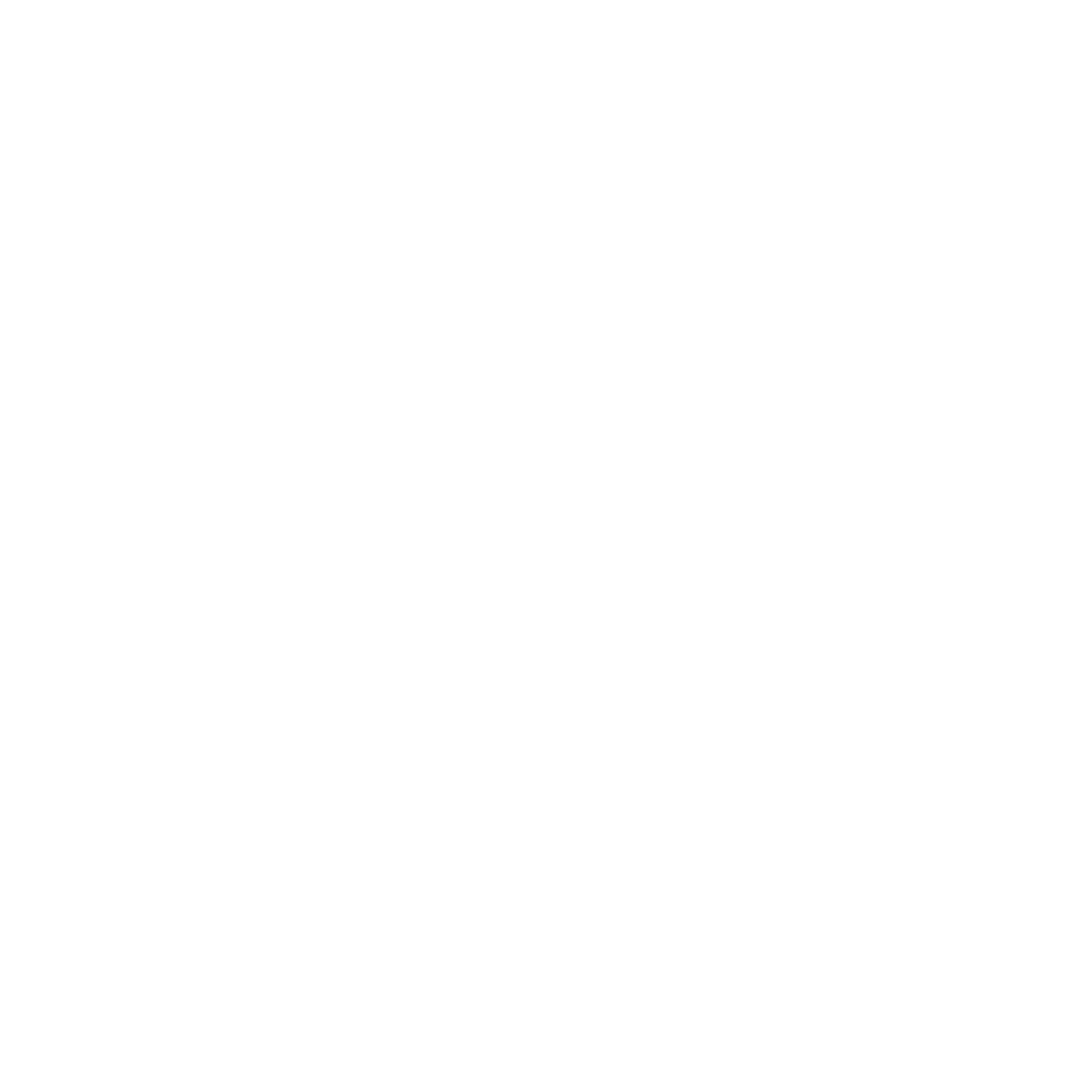 Rocketeers of Retail