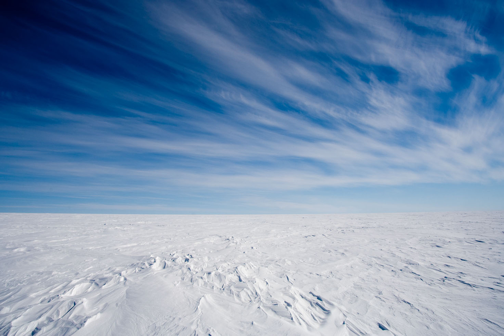 polar hibbert photo 2