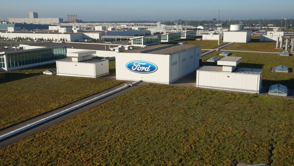 Green-Roof-Ford-Dearborn-plant