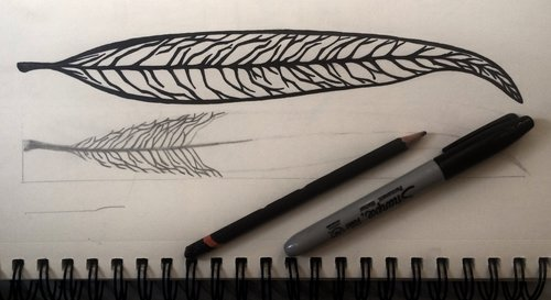 willow+leaf+drawing.jpg