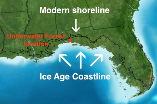 60,000 years ago the coastline of southern North America extended about 50 miles further south