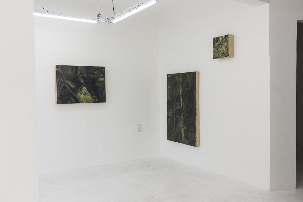 Obras da série Vendo a grama crescer, do artista Pedro Ivo Verçosa na exposição UM.ARTISTA - SOMA Galeria.jpg