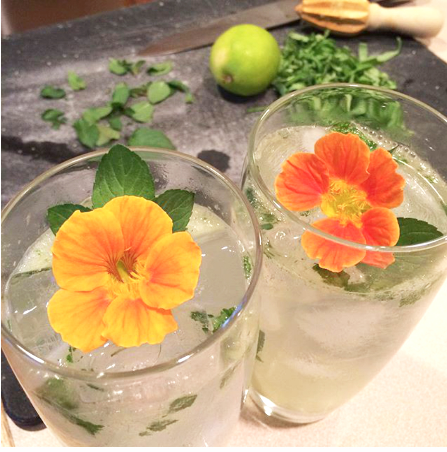 flower_drinks.jpg