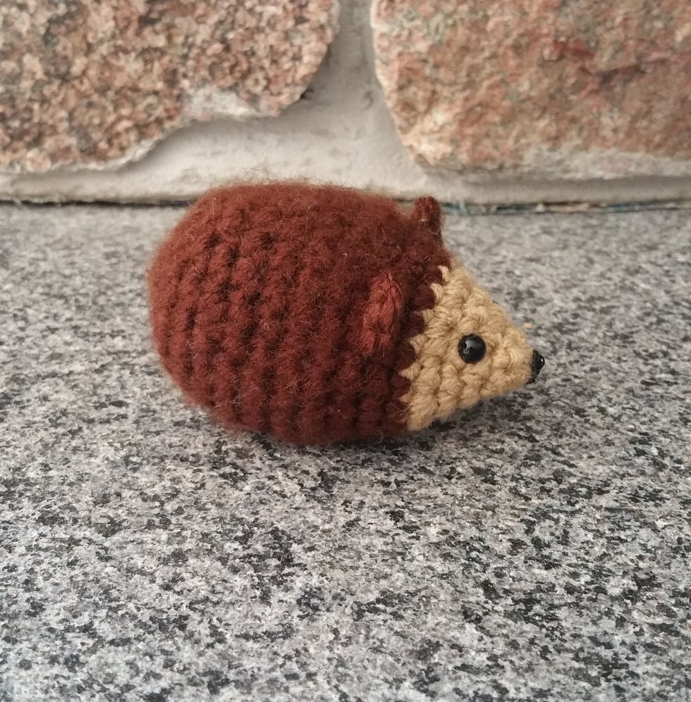 Little Hedgehog.jpg