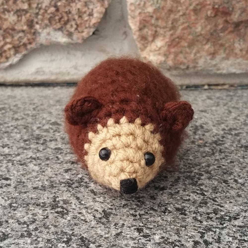 Tiny Hedgehog.jpg