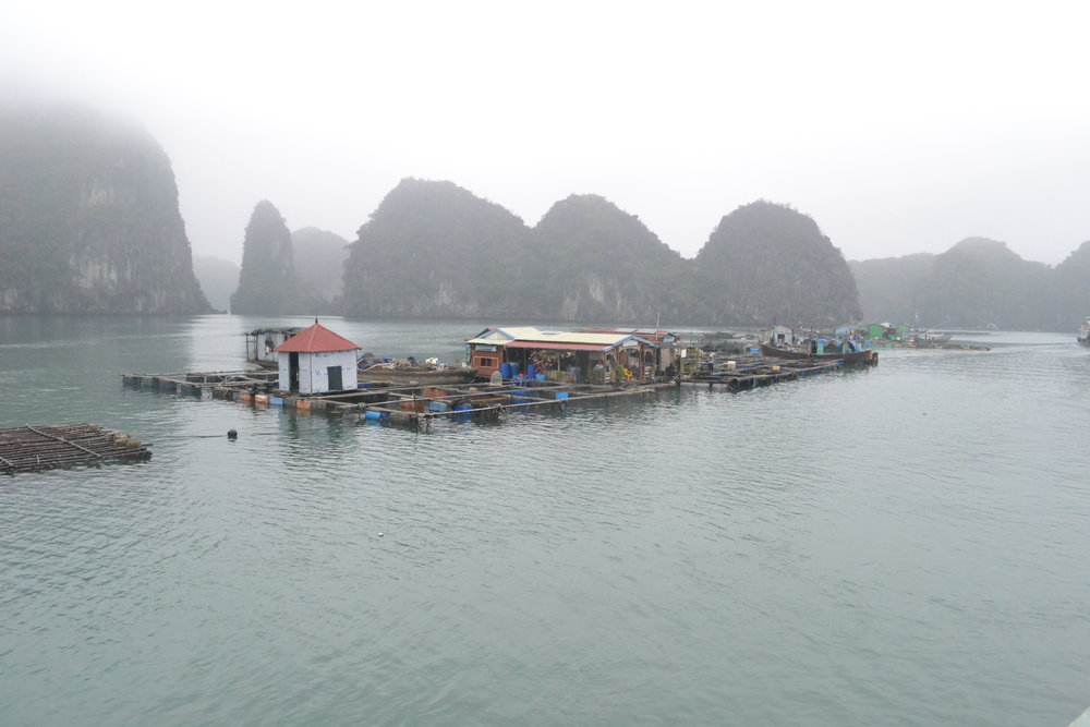 Some of the fishing villages in Ha Long Bay