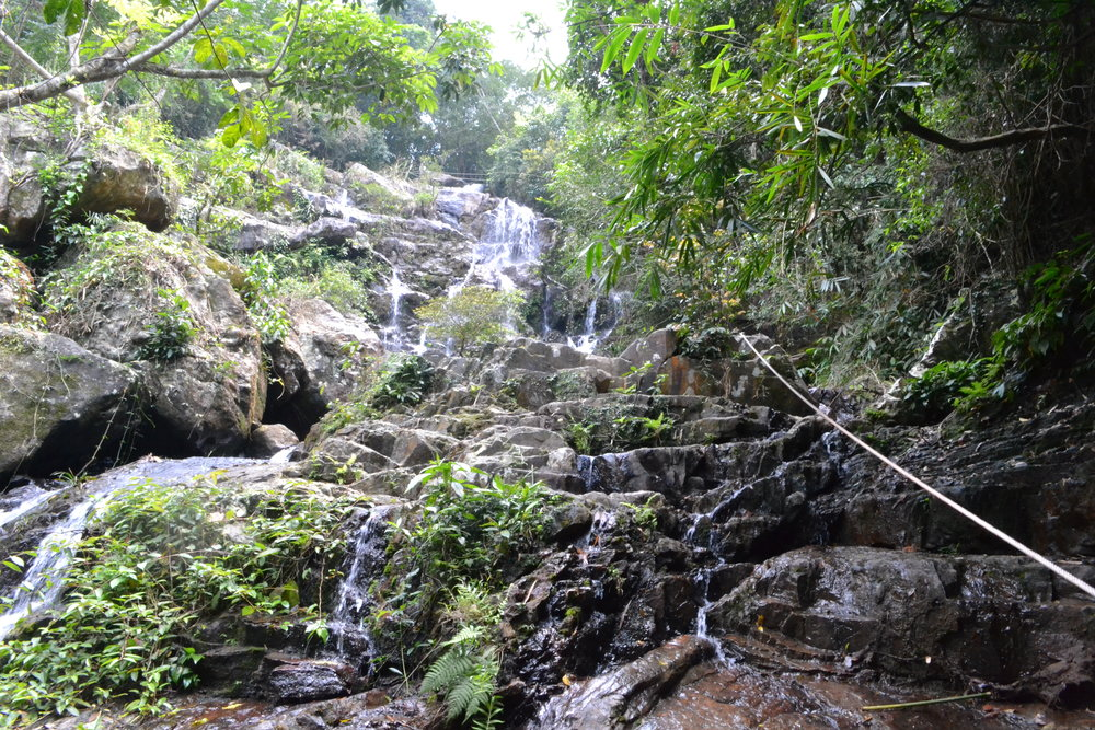 Climbing the stunning water falls in the Botanical Gardens. !Caution!, slippery when wet!